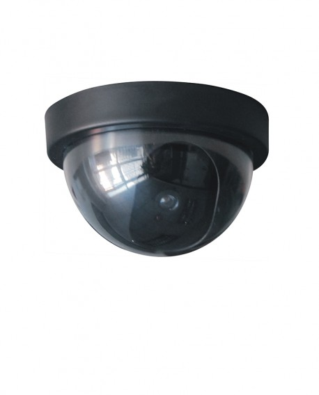 Dome nepcamera met LED